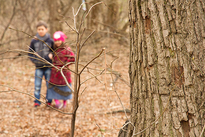 spring-forest-cnd-children