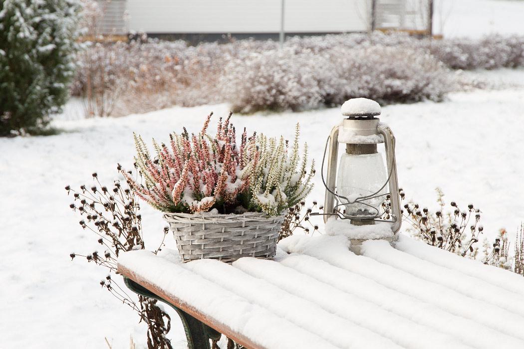 снег в Северном Саво, Финляндия