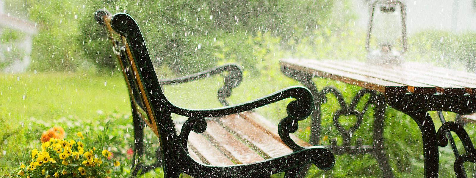 Heavy rain and yard bech